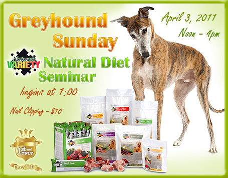 Greyhound Sunday