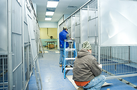 Kennel Construction: Kennel Cages Installation
