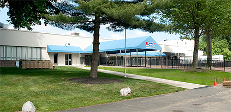 NGAP Greyhound Adoption Kennel